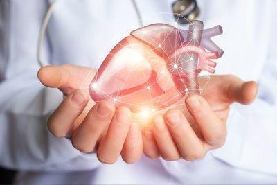 Crean mapa detallado del corazón que podría guiar tratamientos personalizados