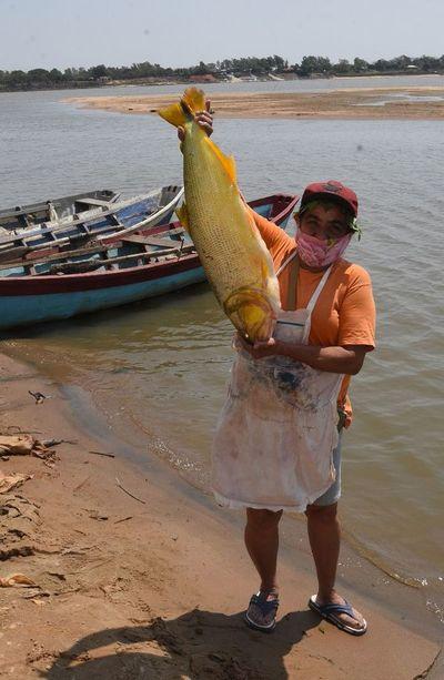 El pescado se encareció y    falta  stock del producto