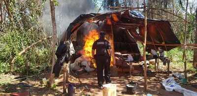 SENAD destruyó 8,8 toneladas de marihuana en campamento en Caaguazú