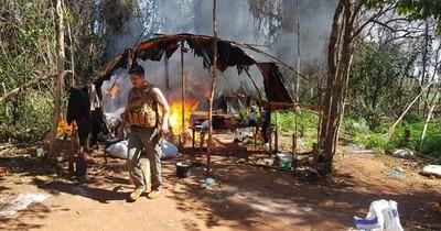 La Nación / Caaguazú: detectan y eliminan 8.860 kilos de marihuana en campamento oculto