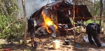 HOY / SENAD destruye un campamento y más de 8 toneladas de marihuana