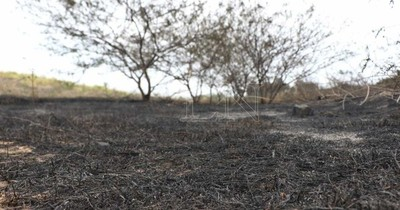 La Nación / Capacitan a pobladores para lucha contra incendios forestales