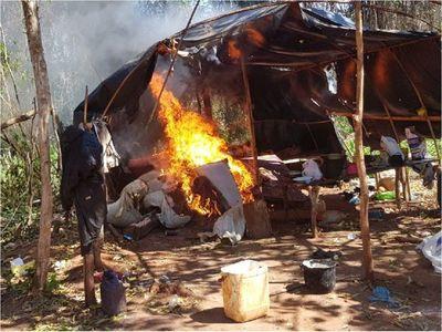 Senad destruye 8,8 toneladas de marihuana en Caaguazú