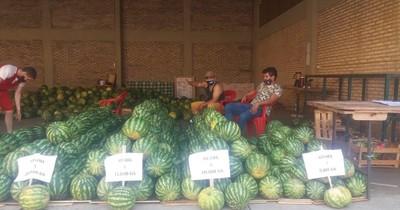 La Nación / Productores de sandía vendieron 2.500 frutas mediante la gestión del MAG