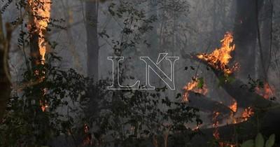 La Nación / Se multiplican focos de incendio en varios puntos del país