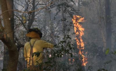 HOY / El 100% de los incendios es por culpa de quienes los provocan, afirman