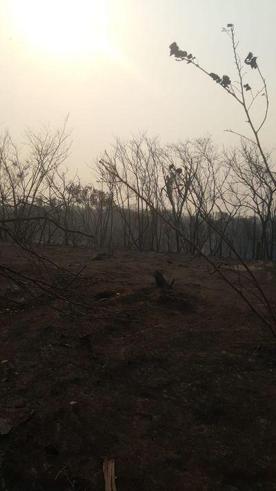 Bomberos no dan abasto ante la gran cantidad de incendios en el país
