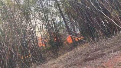 Fuego consume 500 hectáreas en Nueva Italia