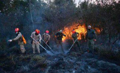HOY / Reserva Tati Yupí en Hernandarias sufre el rigor de los incendios