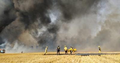 La Nación / Arrecian incendios de pastizales y cultivos en Alto Paraná