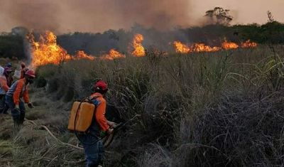 Incendios devastadores en varias zonas