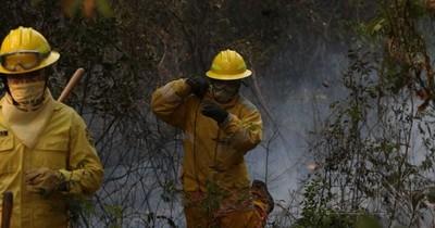 La Nación / Preocupa gran cantidad de incendios forestales y advierten sobre daños ocasionados