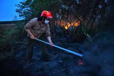 Bomberos y guardaparques de ITAIPU logran controlar incendios forestales