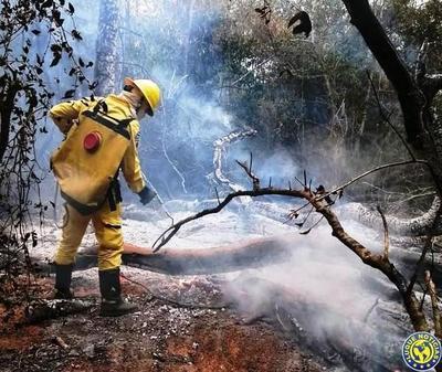 En un día reportaron seis incendios en Luque •