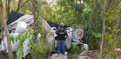 SENAD incauta 2,5 toneladas de marihuana en Caaguazú