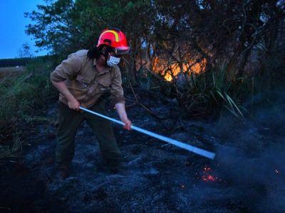 Incendios en reservas forestales de Itaipú fueron controlados
