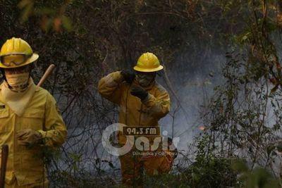 Preocupa gran cantidad de incendios forestales y advierten sobre daños ocasionados