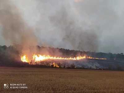 Incendio en plantación de TRIGO y zona BOSCOSA
