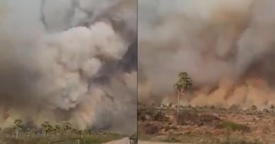 La Nación / Paraguay arde: incendios de magnitud afectaron varias zonas del país