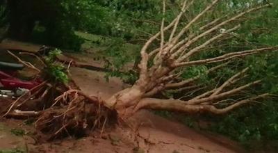 Vientos fuertes y caídas de granizos afectaron al norte del país