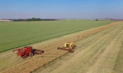 Medidas para reducir la vulnerabilidad al cambio climático del sector agrícola
