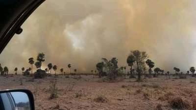 Terrible incendio forestal en General Bruguez deja varias familias afectadas