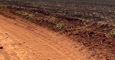 La Nación / Exigen respetar fallos judiciales sobre juicio de tierras en Corpus Christi, Canindeyú