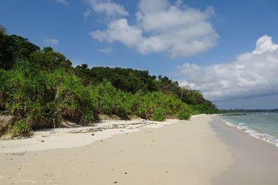 Gobierno brasileño revoca medidas de protección de zonas litorales