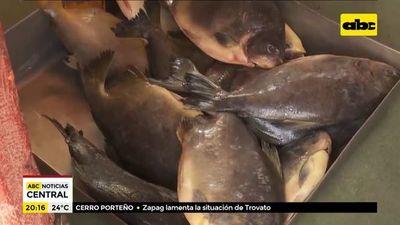 Pescadores de Piquete Cué resisten a la pandemia