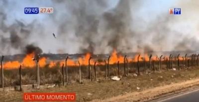 Sofocan incendio en predio de aeropuerto Silvio Pettirossi – Prensa 5