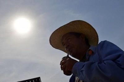 ¡A cuidarse! Meteorología anuncia calor extremo desde mañana con máximas de hasta 42° C