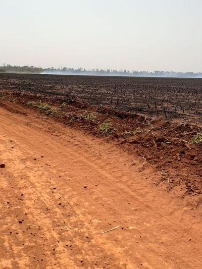 Exigen acatar decisiones judiciales sobre juicio de tierras en Canindeyú