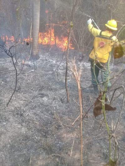 La desgracia no se puede presupuestar, sostiene bombero
