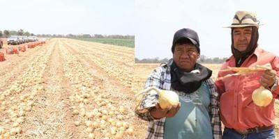 EL CHACO PARAGUAYO SIGUE AMPLIANDO Y DIVERSIFICANDO SU PRODUCCIÓN AGRÍCOLA