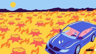 Del Chaco paraguayo deforestado al cuero para autos lujosos