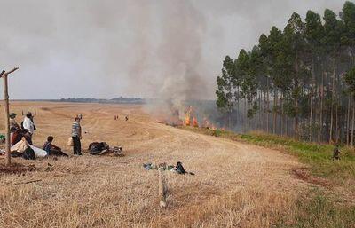 Invasión y hostigamiento sistemático de grupo campesino a industria forestal, denuncian