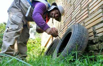 """""""Pará-na los criaderos"""": trabajos de rastrillaje y fumigación"""