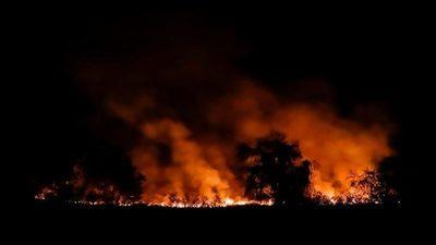 El 90% de incendios son intencionales