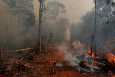 Los incendios en la Amazonía y Pantanal brasileño se dispararon en septiembre