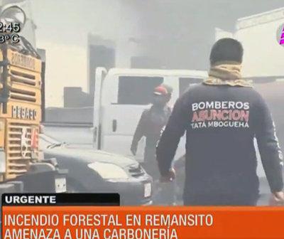 Gran incendio forestal en la zona de Remansito