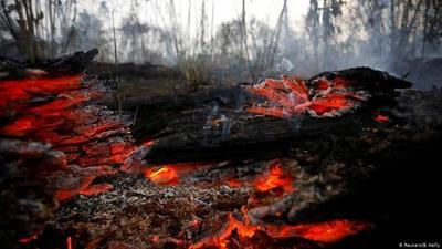 Europa critíca deforestación y amenaza bajar pulgar a TLC con Mercosur