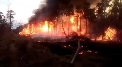 Declaran situación de emergencia nacional por incendios