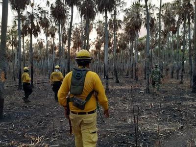 Ejecutivo libera a funcionarios públicos que son bomberos para combate a incendios