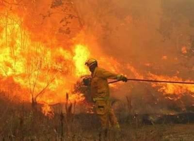 Régimen especial para funcionarios públicos que sean bomberos voluntarios