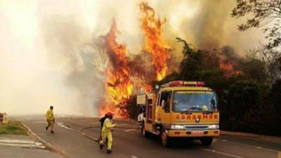Solicitarán ayuda internacional para combatir incendios