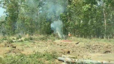 Premian a empresa que taló árboles y generó incendios