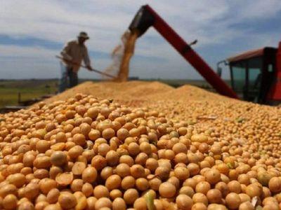 Senadores aprueban seguro agrícola con tributo a la soja