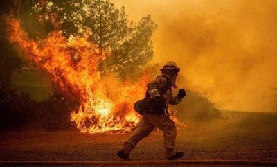 Desidia en política ambiental encendió mecha de arrasadores incendios