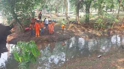Limpian arroyo Amambay de CDE