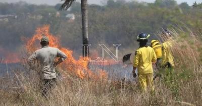 La Nación / Incendios forestales dejan un fallecido por quemaduras y otro por intoxicación